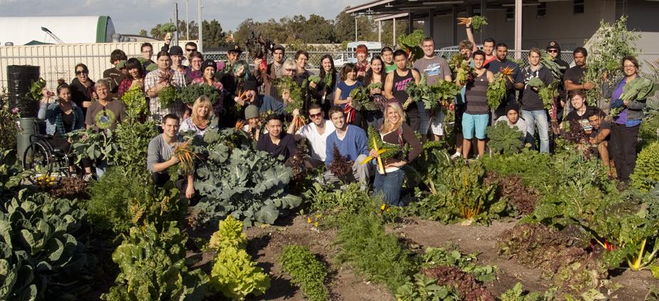 Horticulture students in the garden