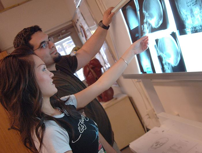 Two radiologic technology students view x-rays of a skull displayed on an x-ray illuminator