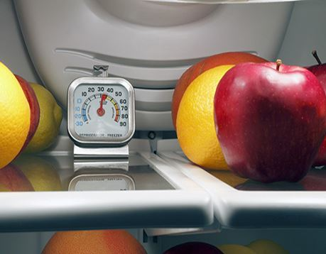 Closeup of apples and oranges in a refrigerator