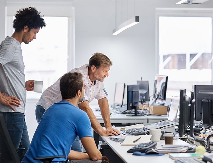 Multi-ethnic colleagues using computer at desk
